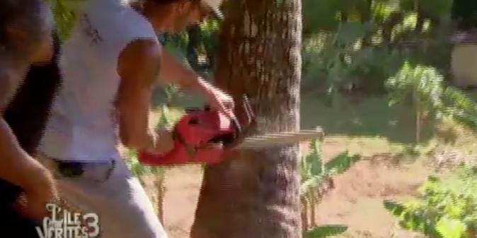 Ju doit mettre à terre un cocotier de 20 mètres !