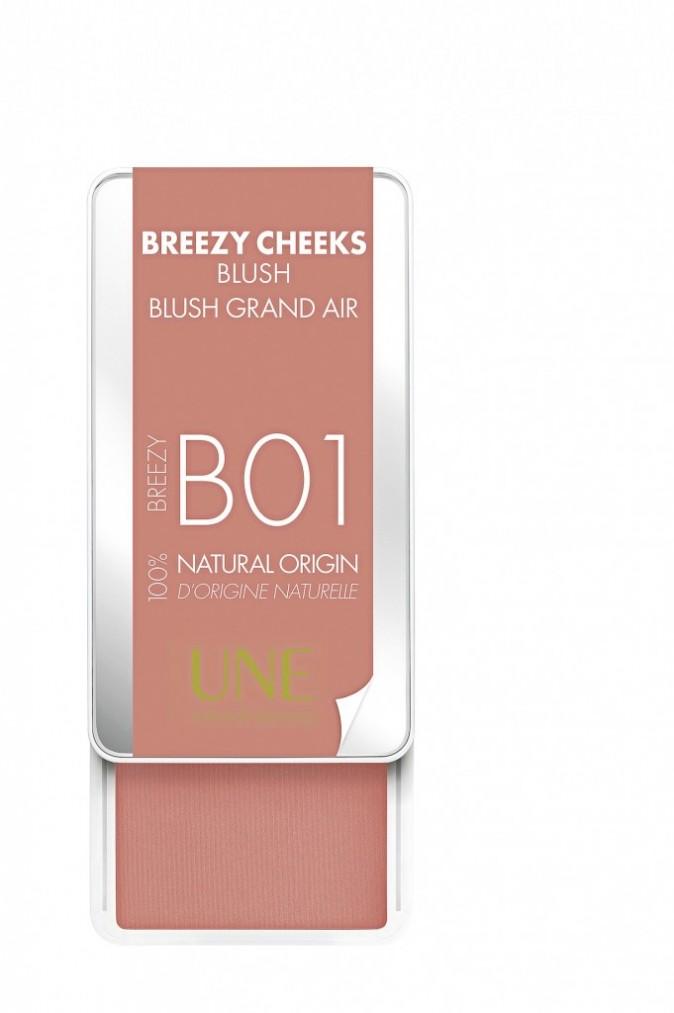 Blush Breezy Cheeks, Une, 32 euros