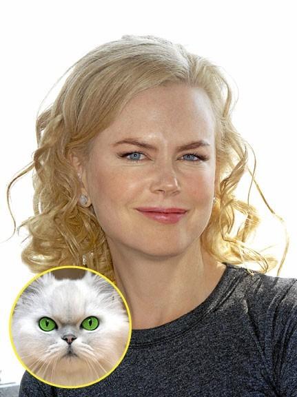 Nicole Kidman : de Moulin Rouge à La momie, il n'y a qu'un pas..