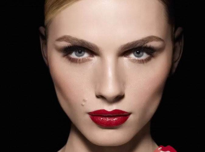 Andreja Pejic, le premier mannequin transgenre continue son ascension pour Make Up For Ever !