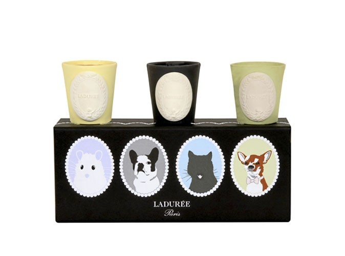 Déco : des bougies gourmandes Ladurée !