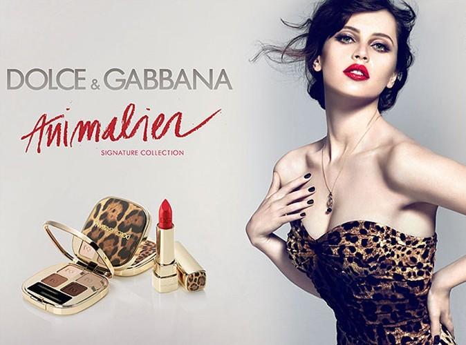 Félicity Jones : découvrez sa nouvelle campagne pour Dolce & Gabbana !