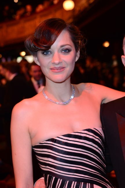 Le chignon sophistiqué de Marion Cotillard le 22 janvier 2013