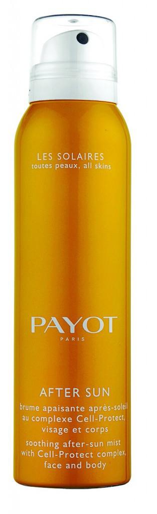 Brume après-soleil, Payot 27 €
