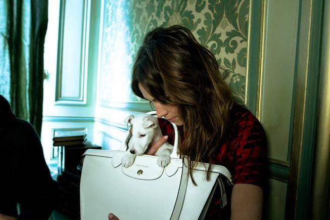 Mode : Alexa Chung une nouvelle fois égérie à l'occasion des 20 ans du sac Pliage de Longchamp !