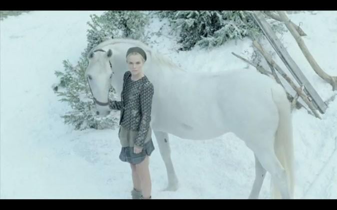 Cheval blanc, neige immaculée... Une campagne éblouissante !