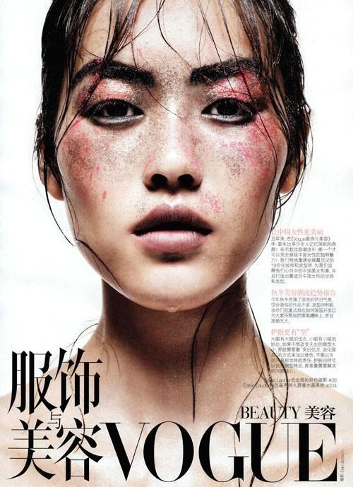 N°9 : Liu Wen