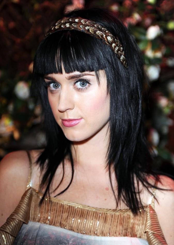 L'évolution capillaire de Katy Perry : 2008