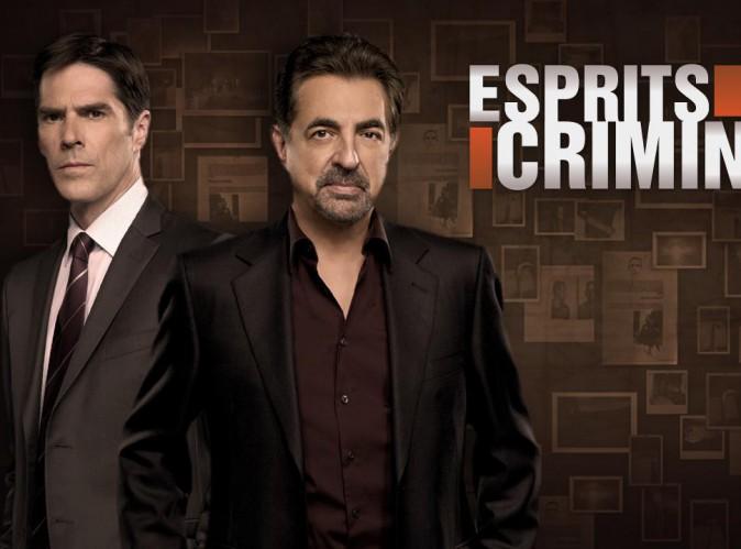 """Audiences télé : """"Esprits Criminels"""" bat """"L'amour est dans le pré"""" en prime time !"""