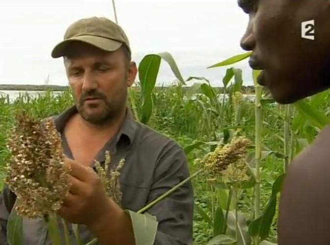 Audiences télé : France 2 domine TF1 avec Rendez-vous en terre inconnue !