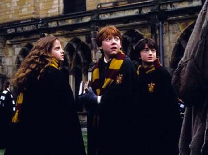 Audiences télé : la magie Harry Potter opère pour TF1 !