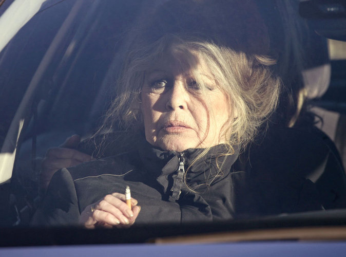 Brigitte Bardot : elle s'en est prise à la vie d'un acteur de Sous le Soleil !