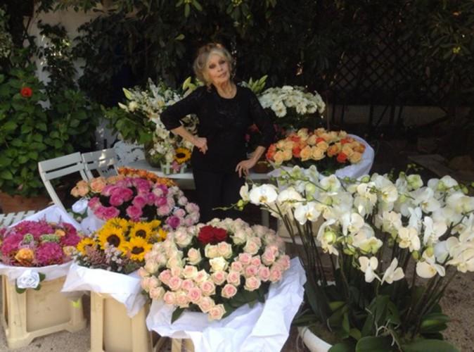 Brigitte Bardot : gâtée pour ses 80 ans, entre fleurs et hommages !