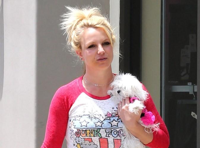 Britney Spears : elle met son boa en plume et des menottes aux enchères…