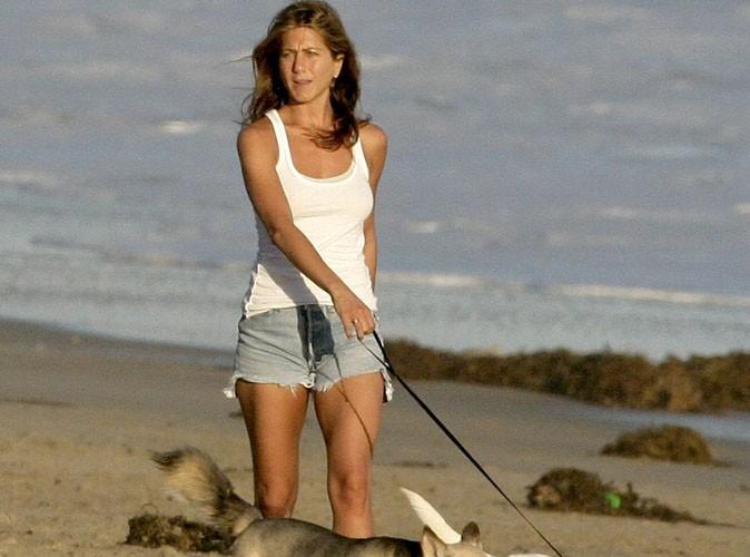 Jennifer Aniston : son premier tatouage en hommage à son chien disparu ...