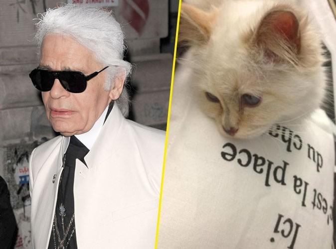 Karl Lagerfeld : son chat Choupette baigne dans le luxe le plus complet !