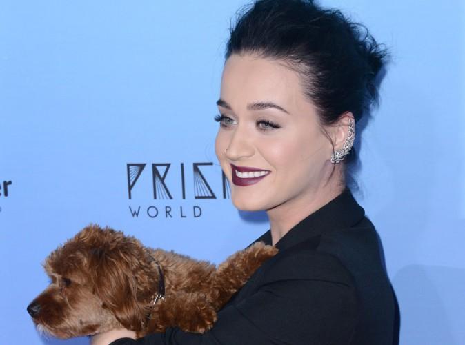 Katy Perry : Elle donne par erreur son num�ro de t�l�phone � tous ses fans !