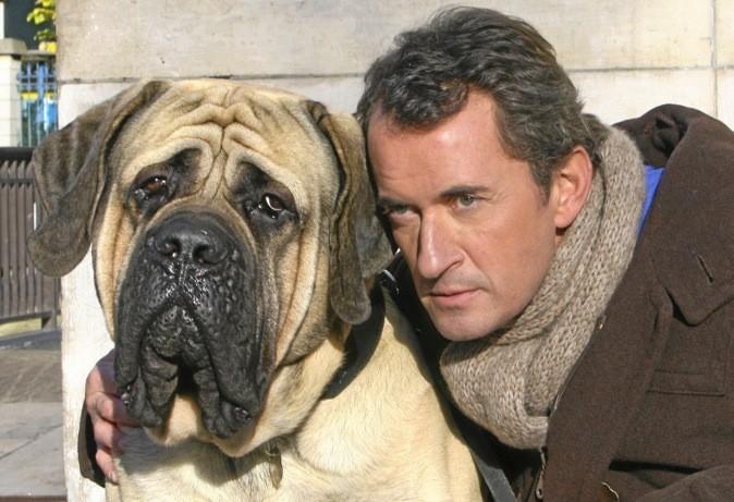 Le télé-film Hubert et le chien sur NT1
