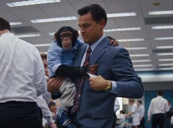 Leonardo DiCaprio : il s'attire les foudres des défenseurs des animaux à cause du Loup de Wall Street !