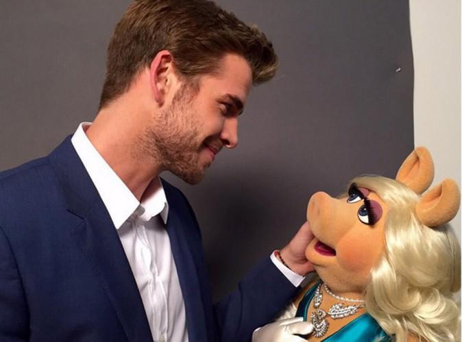 Liam Hemsworth débarque sur Instagram et déclare son amour à Peggy la cochonne !