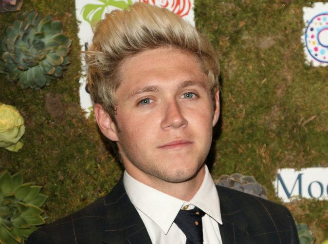 Niall Horan : le chanteur est en couple avec une étudiante belge !