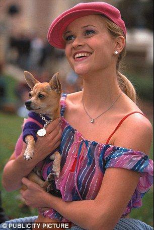 """Reese Whiterspoon en Elle Woods dans le film """"La Revanche d'une blonde """""""