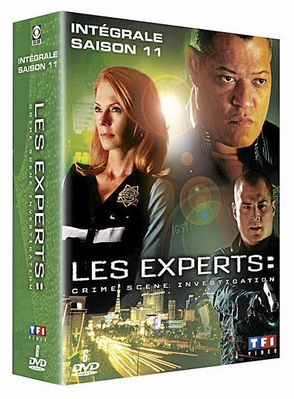 Les Experts, saison 11