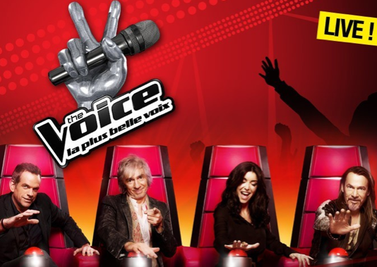 Qui sont les demi-finalistes de The Voice ?
