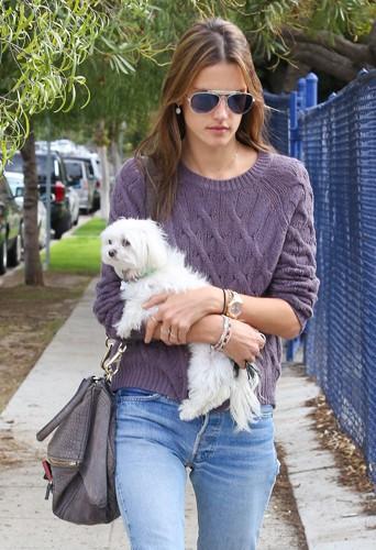 Alessandra Ambrosio à Los Angeles le 19 décembre 2013