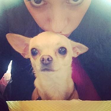 Alizée déjeune en tête à tête avec Galak : son chien !
