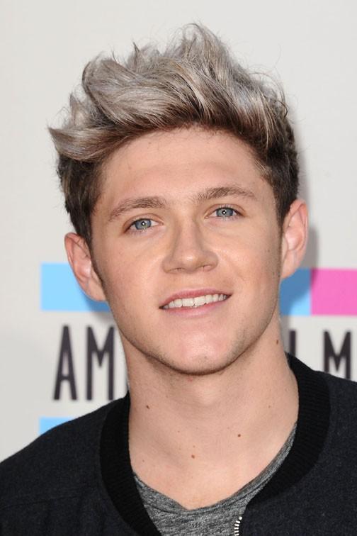 Niall Horan à la cérémonie des American Music Awards organisée à Los Angeles le 24 novembre 2013