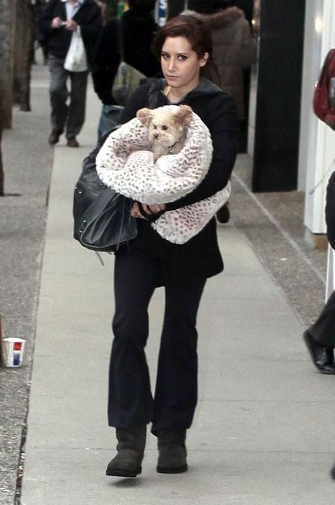 Une tenue qui a du chien !
