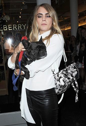 Cara Delevingne à New York le 8 septembre 2014