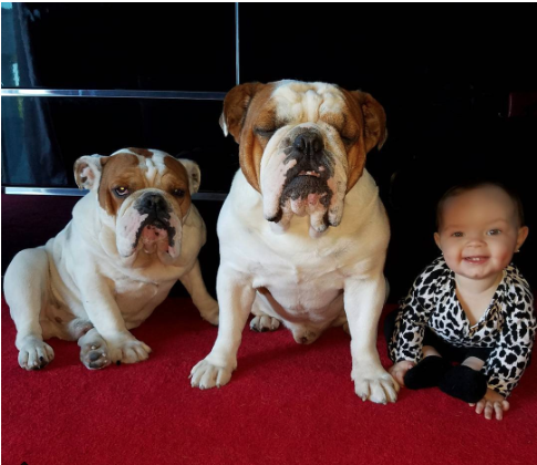Coco Austin, sa fille Chanel, ses chiens... et parfois son mari !