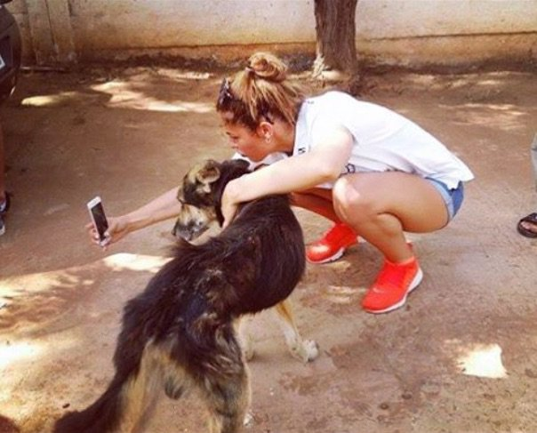 Coralie Porrovecchio est venue en aide aux animaux