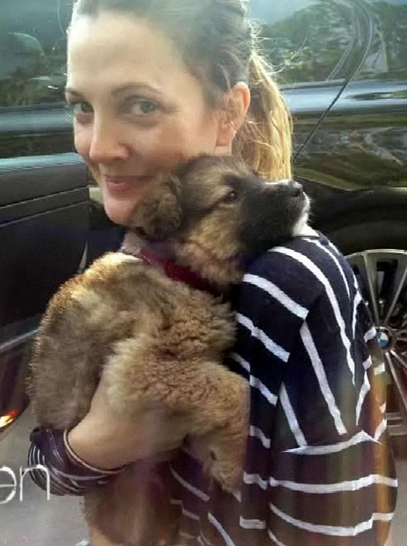 C'est Drew Barrymore la nouvelle maman d'Olivier !