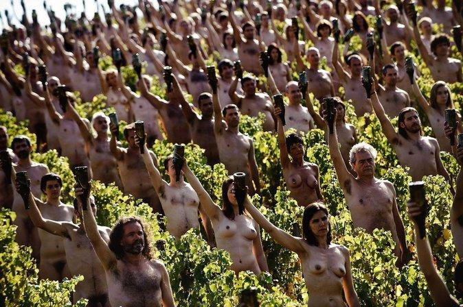 Dans un vignoble près de Mâcon, France, le 3 octobre 2009