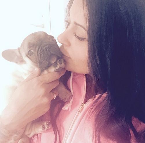 Photos : Guizmo : le chien de Shanna et Thibault déjà star du web !