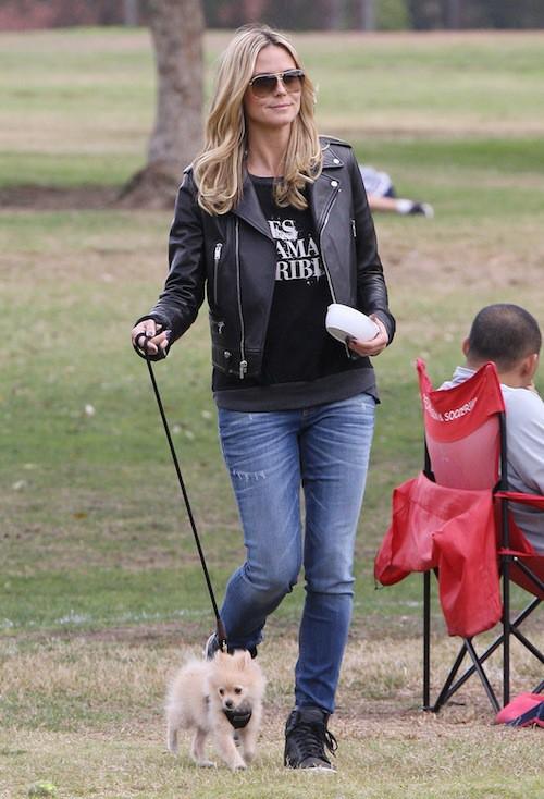 Photos : Heidi Klum : elle accueille un nouveau membre dans sa famille !