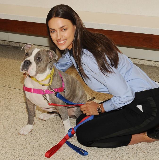 Photos : Irina Shayk : une femme engagée qui a du chien !