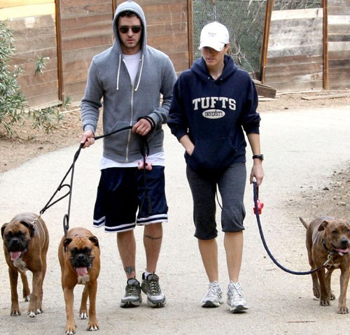 Ils partageaient l'amour des chiens