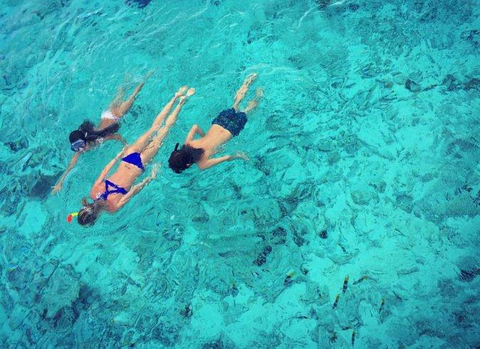 Jade, Laeticia et un petit tahitien nagent avec les requins