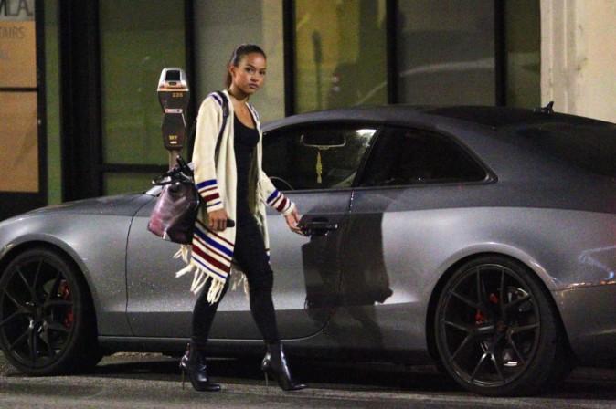 Photos : Karrueche Tran : après une virée sans Chris Brown, elle dévoile ses goûts douteux en matière de vaisselle...