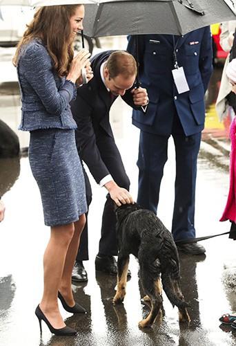 Kate Middleton et le Prince William à Wellington le 16 avril 2014