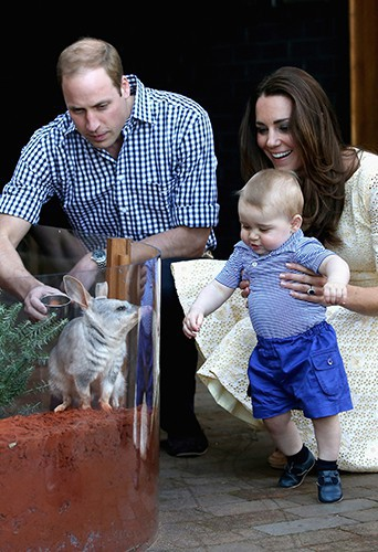 Le couple princier et son petit George à Sydney le 20 avril 2014