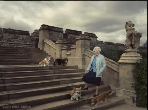 La Reine et ses chiens