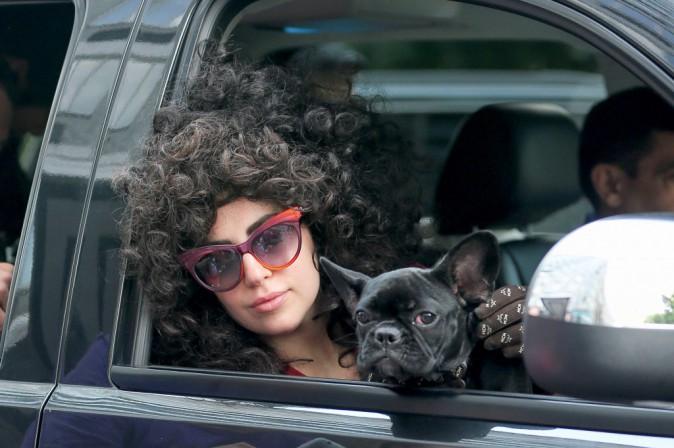 Lady Gaga toujours aussi lookée ! Ici en sortie avec son chien Asia, à New York le 30 juillet