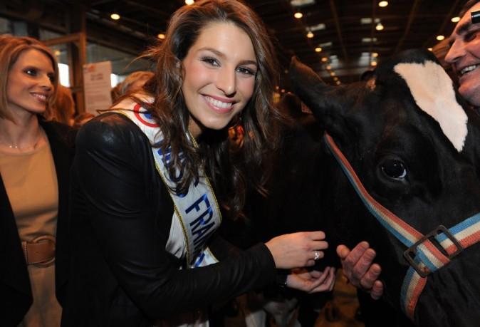 Même pas peur d'une vache !