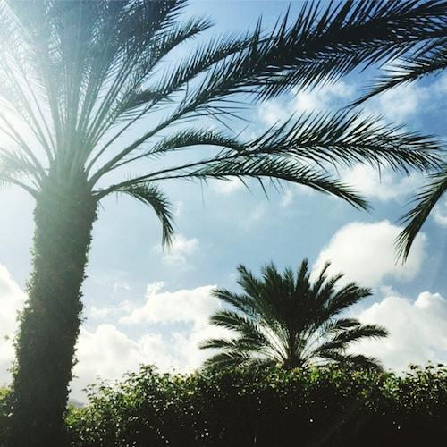 Rita Ora depuis Miami