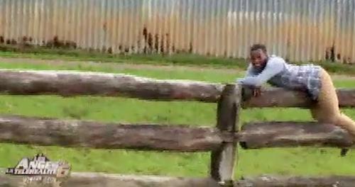 Au ranch, Sofiane doit servir d'appât pour un taureau